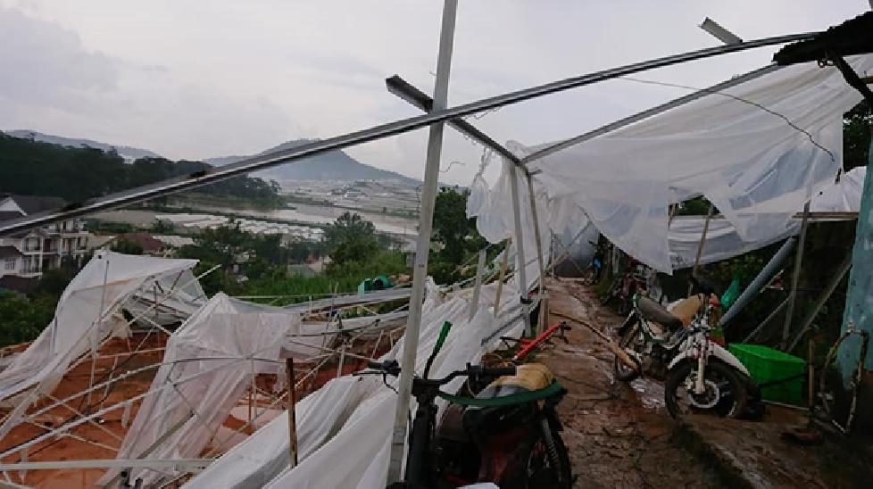Nhiều nhà ở Đà Lạt bị lốc xoáy kéo sập