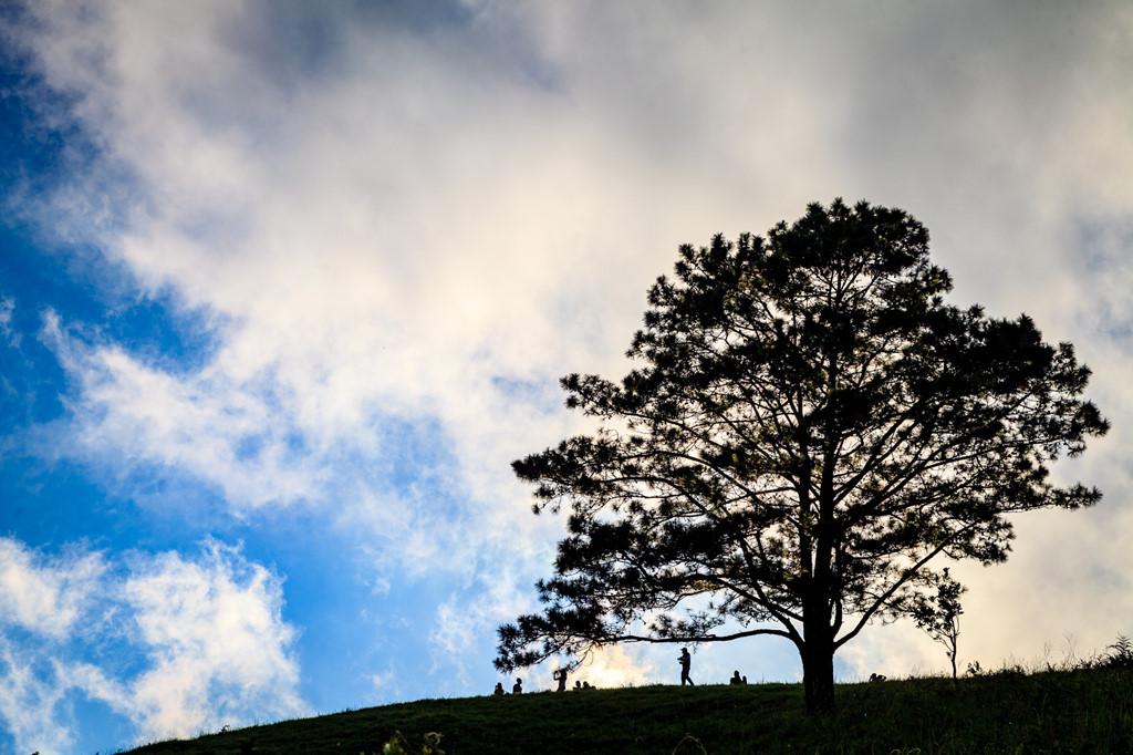 Ta Nang - Phan Dung: Cung duong trekking dep nhung day ray hiem nguy hinh anh 9