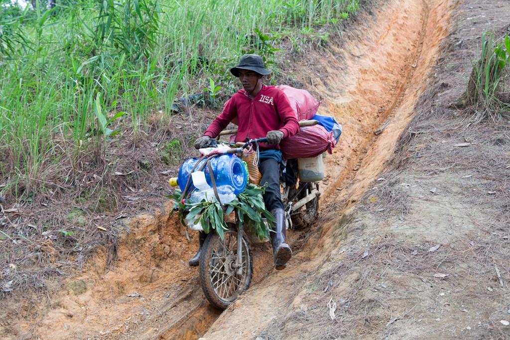 Ta Nang - Phan Dung: Cung duong trekking dep nhung day ray hiem nguy hinh anh 6