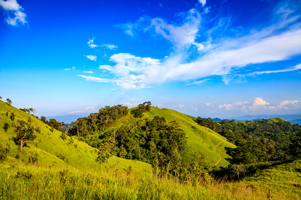 Ta Nang - Phan Dung: Cung duong trekking dep nhung day ray hiem nguy hinh anh 7